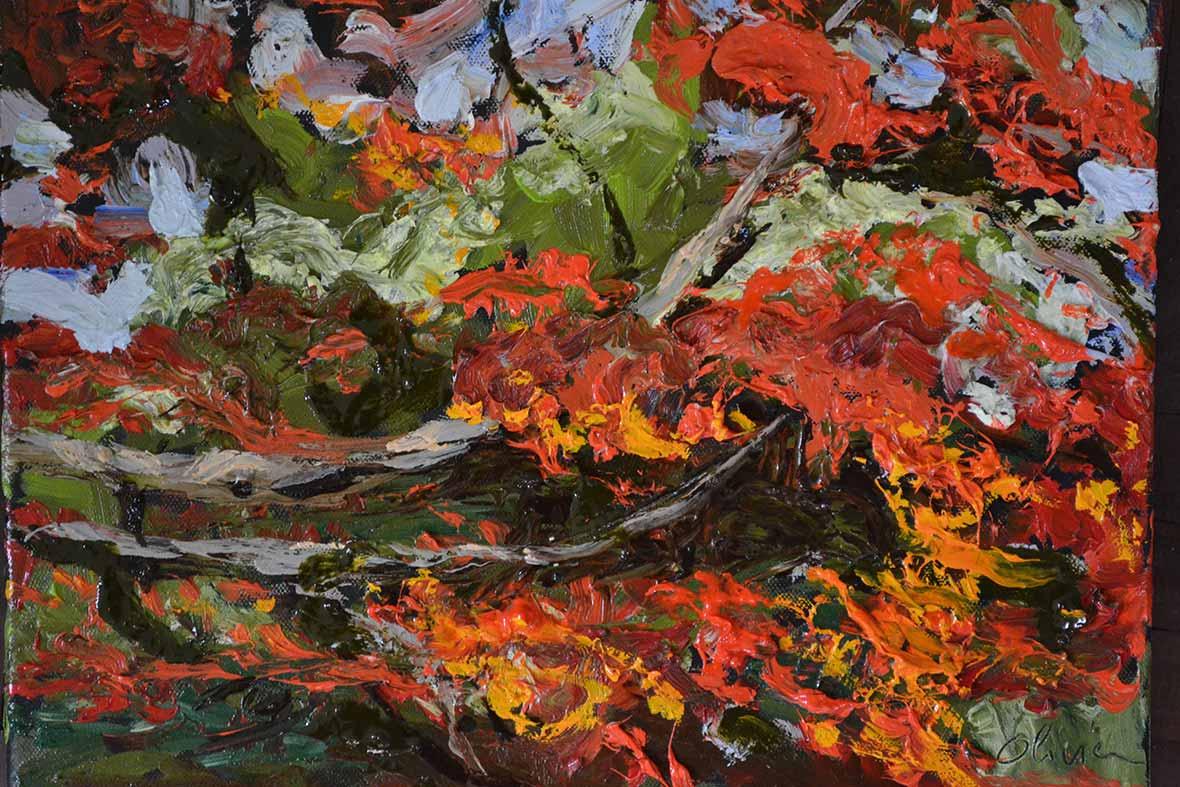 """""""Branche de flamboyant""""/Oil on canvas/30X50 cm"""