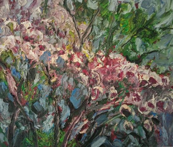 Floraison rose. Oil on canvas 50 cm x 43 cm